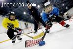 Хоккеиные занятия